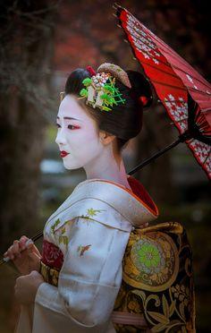 2015 舞妓 祇園甲部 まめ藤さん (2016年 引退されました) 2015 maiko, Gion Kobu, Mamefuji (now retired)
