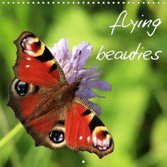 flying beauties - CALVENDO calendar - http://www.calvendo.co.uk/galerie/flying-beauties/ - #butterfly #butterflies #calendar #square #calvendo