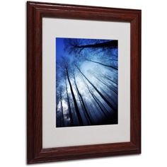 Trademark Fine Art Blue Forest Canvas Art by Philippe Sainte-Laudy, Wood Frame, Size: 16 x 20, Multicolor