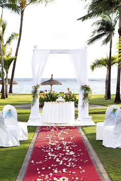 Thomson Weddings add the perfect backdrop to your big day, with blue sky and palm trees as standard. Click on the pin to find your dream wedding!