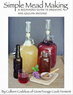 Learn the basics of how to make a gallon of mead with my Simple Mead Making eBook. It's perfect for beginners who want to learn how to make their own mead!