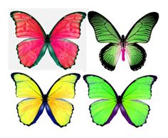 1278200112_55_FT0_summer_sorbet_butterflies_ii_ (600x498, 52Kb)