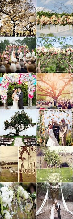 Here are 15 wedding canopy and Arch ideas using gorgeous flowers and dramatic natural backdrops - picture perfect!