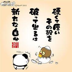 「硬くて厚いその殻を 破って出るのは 新たな自分」 FBページ http://www.facebook.com/taputapupage オフィシャルHP http://taputapu.jp