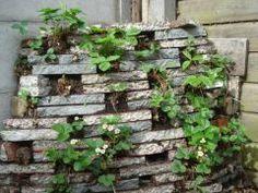 Kom jij ook altijd plek tekort in je (moes)tuin? Ga de hoogte in! Een aardbeientoren kun je makkelijk zelf maken -> http://blog.nudge.nl/2014/02/24/maak-zelf-een-aardbeientoren/
