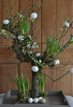 ▷ ideas for wooden Easter decorations in the house or garden - Make Easter decorations and decorate them with eggs - Happy Easter, Easter Bunny, Easter Eggs, Easter Tree, Deco Floral, Arte Floral, Easter Flowers, Spring Flowers, Diy Ostern