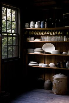 this will be my woodland home. these will be my shelves of dishes.