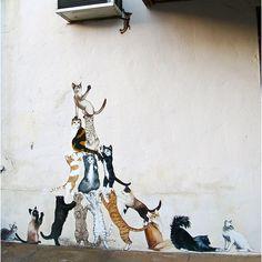 Street art: Pyramide de chats