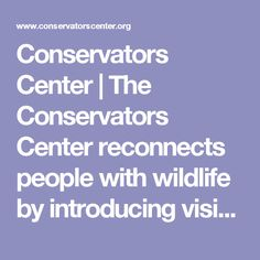Conservators Center   The Conservators Center reconnects people with wildlife by introducing visitors to rare, threatened, and endangered species—up close and personal.  It is home to 20 species, including lions, tigers, leopards, wolves, servals, singing dogs, and binturongs.