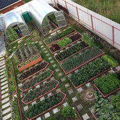 планирование сада и огорода на участке: 25 тыс изображений найдено в Яндекс.Картинках