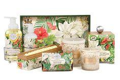 Michel Design Works Vanilla Palm Collection