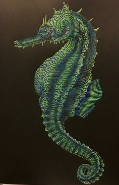 Seahorse coloured by me and drawn by Tim Jeffs from the book Intricate Animals in Detail