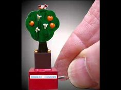 Mini Orange Tree Automata