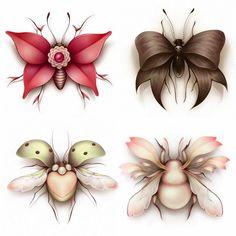 Illustration Lostfish beetles