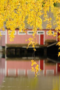 Photos, Pictures, Fall, Places, Autumn, Fall Season, Grimm, Lugares