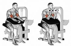 Photo about Selectorized Triceps Extension. Exercising for bodybuilding. Target muscles are marked in red. Initial and final steps. Illustration of workout, final, bodybuilding - 67049400 Gym Workout Chart, Ab Workout Men, Biceps Workout, Workout Guide, No Equipment Workout, Lower Ab Workouts, Gym Workouts, Big Biceps, Bodybuilding Workouts