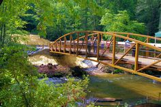 Bridge for waterfall hiking trail in DuPont State Forest