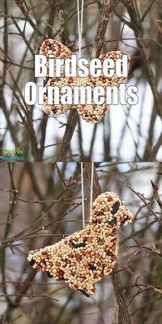If you've been looking for easy, printable directions of how to make DIY Birdseed Ornaments, you've
