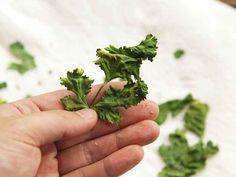 Use the microwave to dry leftover herbs.