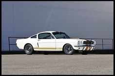 T271 1966 Shelby GT350H Fastback 289 CI, Automatic Photo 1