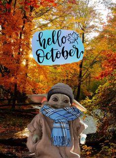 Family Halloween Costumes, Baby Costumes, Yoda Funny, Yoda Meme, Funny Cat Pictures, Yoda Pictures, Yoda Images, Happy Halloweenie, Hello October
