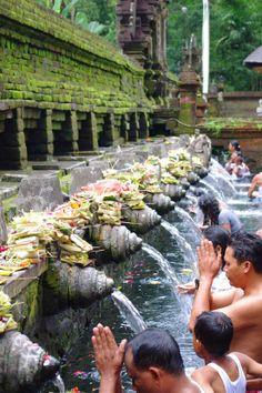 Tirta Empul Temple ティルタ・ウンプルの沐浴風景