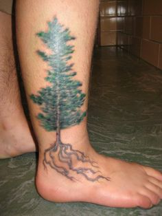 Trees Know Is Like Everything This Tattoo Means To Me And What