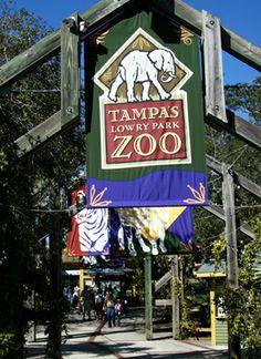 Tampa Zoo  Tampa, FL
