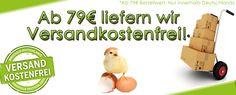 Hühnerfutter, Hühnereier, Hühnerzucht, Hühner Zubehör