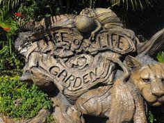 Magic Kingdom It's A Small World Animal Kingdom Epcot Hollywood Disney Disney Resorts Disney Resorts, Disney Disney, Animals Of The World, Small World, Epcot, Magic Kingdom, Animal Kingdom, Lion Sculpture
