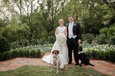 This sweet bride and groom are perfection. Add their beloved pups and they are too-sweet for words!