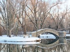 Snowy bridge and bench by a lake at Eastwood Park in Dayton, Ohio. Dayton Ohio, Its Cold Outside, Free Things To Do, Small Towns, Wonderful Places, Stuff To Do, Colorado, Bridge, Beautiful Pictures