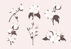 Cotton Plant Vectors - https://www.welovesolo.com/cotton-plant-vectors/?utm_source=PN&utm_medium=welovesolo59%40gmail.com&utm_campaign=SNAP%2Bfrom%2BWeLoveSoLo