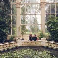 In the orangery (gingerlillytea)