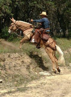 751 Best Cowboys Amp Cowgirls Images Cowboys Cowboy