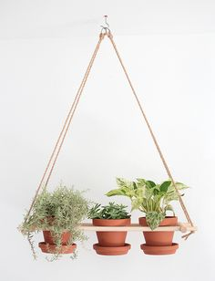 DIY hanging planter | The Merry Tought