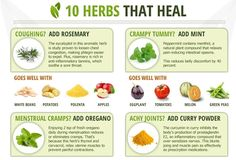 10 Herbs That Heal | How to use them as your natural medicine cabinet. #survivallife www.survivallife.com