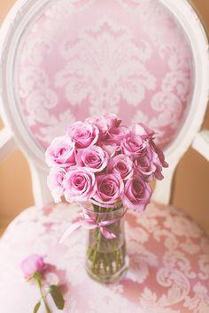 Pink roses v