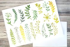 Green watercolor flowers by irina.vaneeva on Creative Market