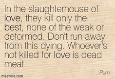 In the slaughterhouse of love, they kill only the best, none of the weak or deformed. Don't run away from this dying. Whoever's not killed for love is dead meat. Rumi