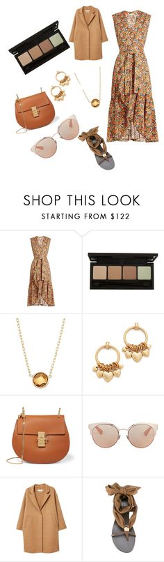 """""""Untitled #1633"""" by martimarisa ❤ liked on Polyvore featuring Rebecca Taylor, Elizabeth Cole, Chloé, Christian Dior, MANGO and Giuseppe Zanotti"""