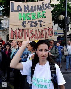 La mauvaise herbe cest Monsanto #archive 2015-05-23 Paris #france Marche contre Monsanto #MaM #MarchAgainstMonsanto #report #gaelic69