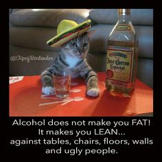 Alcohol does not make you fat! It makes you lean...