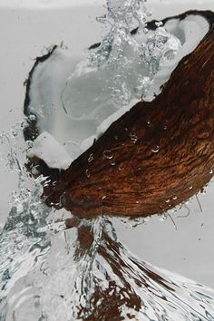 coconut oil is naturally rich in vitamins and antioxidants. coconut oil is naturally rich in vitamins and antioxidants. This natural oil is one of the most powerful anti-aging ingredien. Cute Backgrounds, Cute Wallpapers, Wallpaper Backgrounds, Coconut Grove, Coconut Oil, Coconut Water, Raw Pictures, Food Wallpaper, Beach Aesthetic