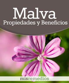 #Malva - Propiedades y Beneficios #PlantasMedicinales