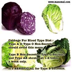 Cabbage for Blood Type Diet : Cabbage 100g = 25 calories. FAT 0.1g, CARB 6g, FIBER 2.5g SUGAR 3.2g, PROTEIN 1.3g  Cabbage contain High Vitamin C Vitamin B-6, A, Calcium Magnesium, Iron
