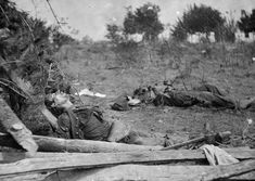 Bodies of Confederate soldiers next to Mrs. Alsop's house, near Spotsylvania Court House, Virginia, in May of 1864.