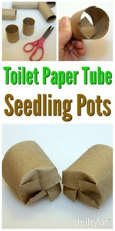 This is a guide about toilet paper tube seedling pots. A great way to recycle toilet paper tubes is to use them as containers to start vegetable and flower seeds for garden plants.