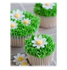{Summer Daisy in The Grass Cupcakes}  #cupcakes