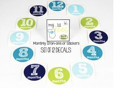MONTHLY IRON ON Decals or Monthly stickers 12 by MyLilTees